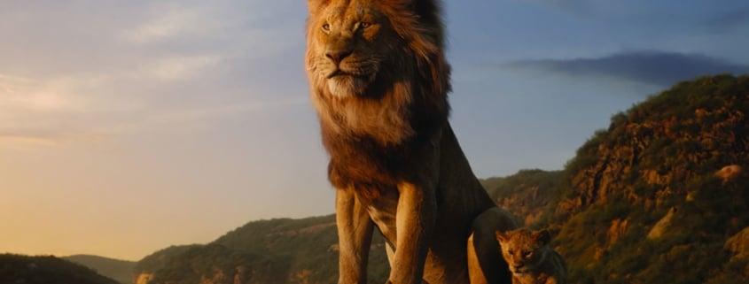Lion - Puissance du graphisme